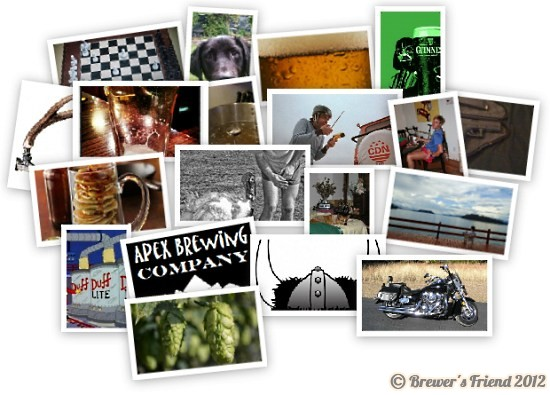 brewer collage 1