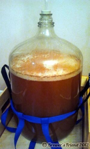 beer fermentor