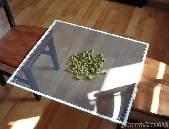 drying hops screen