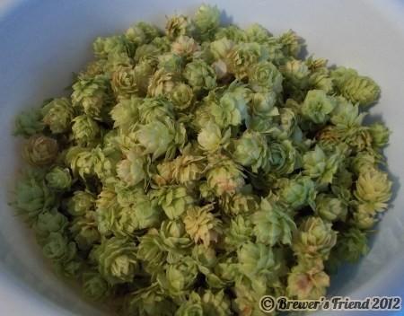 dried fresh hops