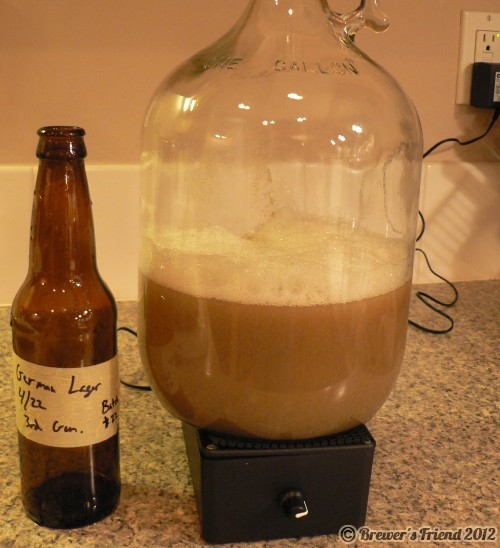 yeast stir plate home brewing