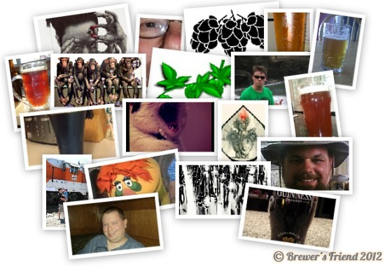 brewer collage 3