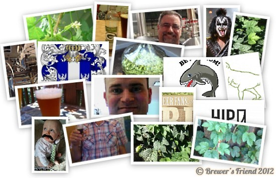 brewer collage 4