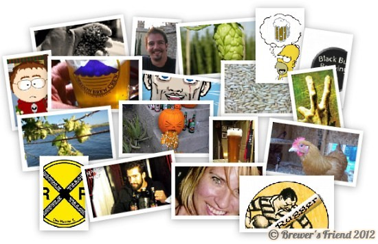 brewer collage 5